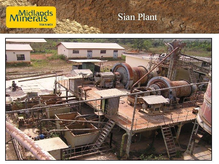 Sian Plant