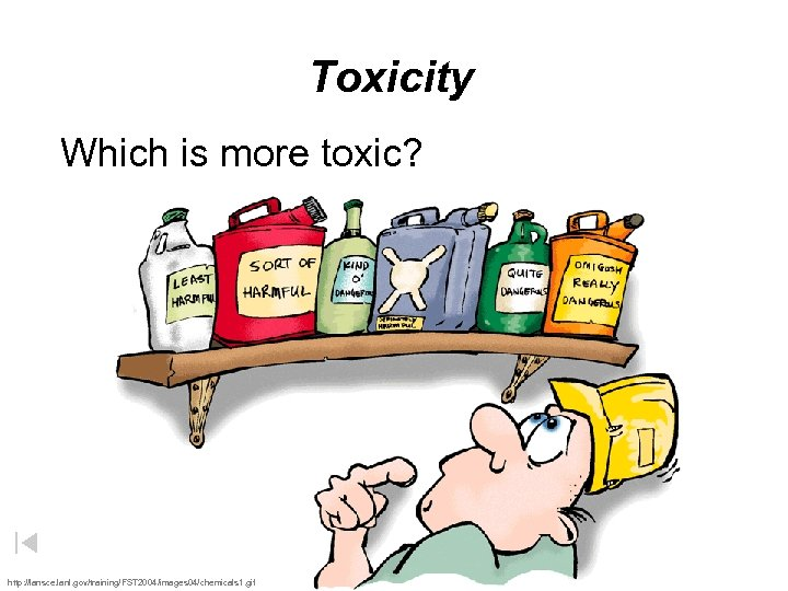Toxicity Which is more toxic? http: //lansce. lanl. gov/training/FST 2004/images 04/chemicals 1. gif