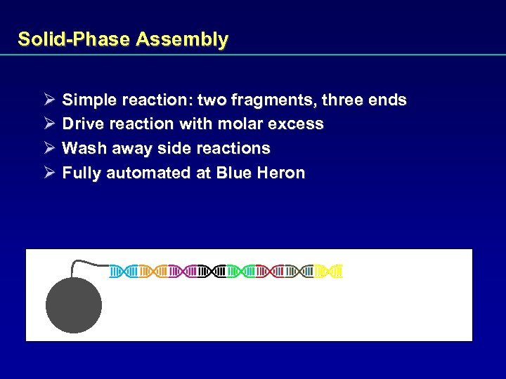 Solid-Phase Assembly Ø Simple reaction: two fragments, three ends Ø Drive reaction with molar