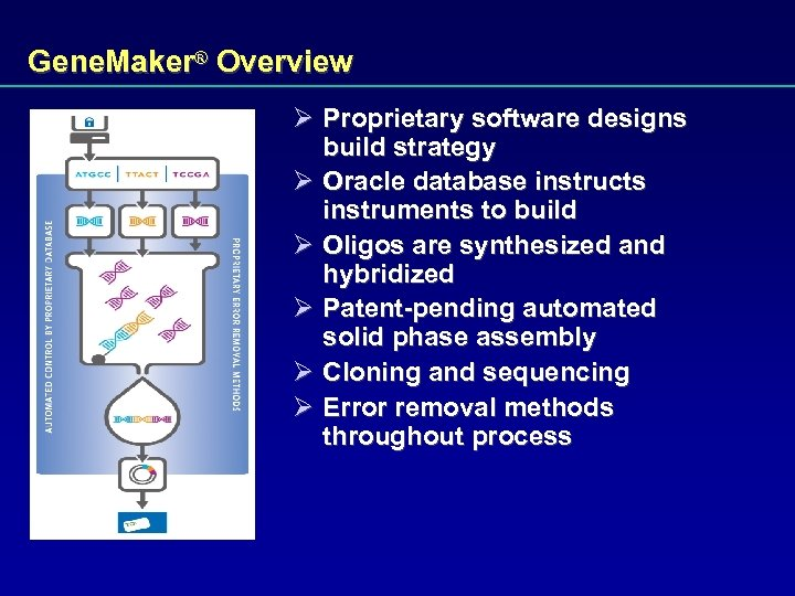 Gene. Maker® Overview Ø Proprietary software designs build strategy Ø Oracle database instructs instruments