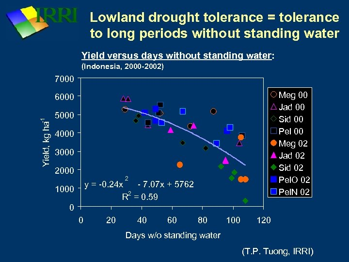 Lowland drought tolerance = tolerance to long periods without standing water Yield versus days