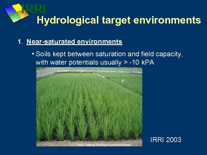 Hydrological target environments 1. Near-saturated environments • Soils kept between saturation and field capacity,