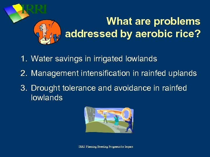 What are problems addressed by aerobic rice? 1. Water savings in irrigated lowlands 2.