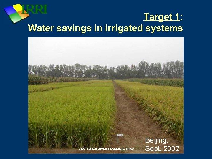 Target 1: Water savings in irrigated systems IRRI: Planning Breeding Programs for Impact Beijing,