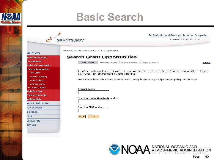 Basic Search Page 43