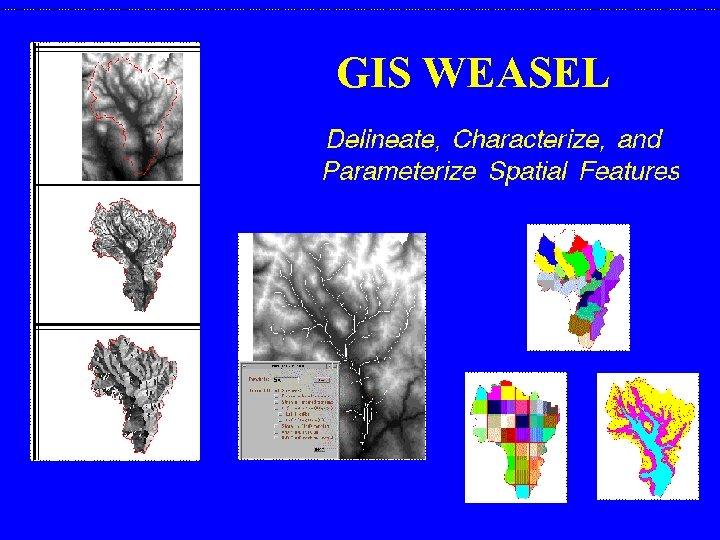 GIS WEASEL