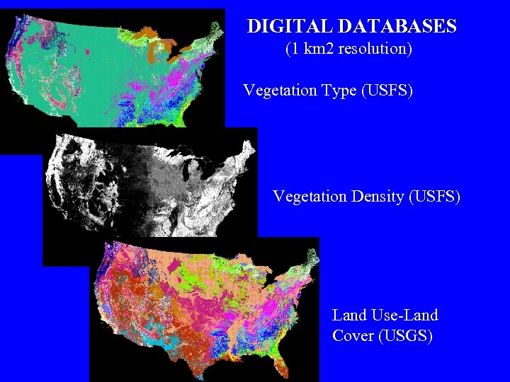 DIGITAL DATABASES (1 km 2 resolution) Vegetation Type (USFS) Vegetation Density (USFS) Land Use-Land