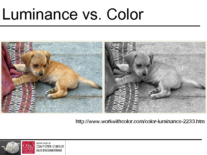 Luminance vs. Color http: //www. workwithcolor. com/color-luminance-2233. htm 79