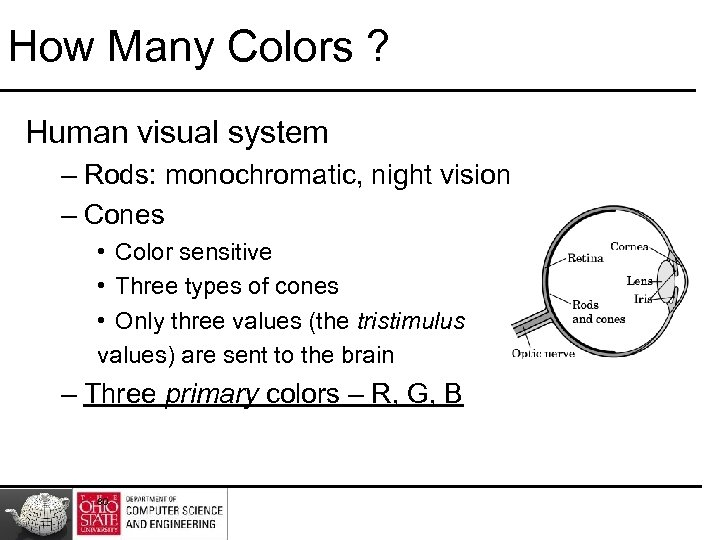 How Many Colors ? Human visual system – Rods: monochromatic, night vision – Cones