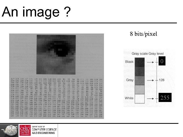 An image ? 8 bits/pixel 0 255