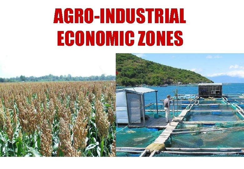 AGRO-INDUSTRIAL ECONOMIC ZONES