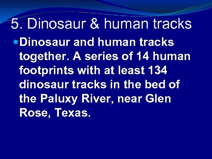 5. Dinosaur & human tracks Dinosaur and human tracks together. A series of 14