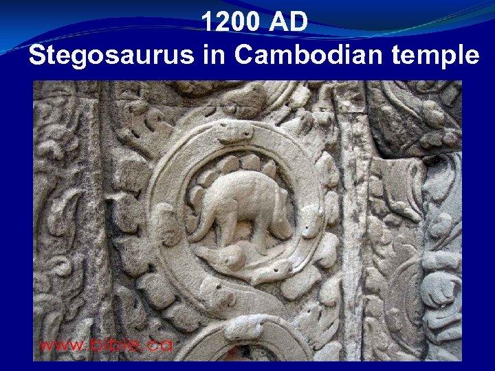 1200 AD Stegosaurus in Cambodian temple