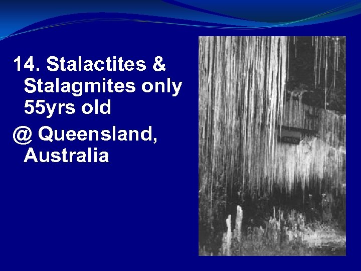 14. Stalactites & Stalagmites only 55 yrs old @ Queensland, Australia