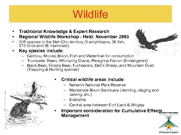 Wildlife • • Traditional Knowledge & Expert Research Regional Wildlife Workshop - Held: November