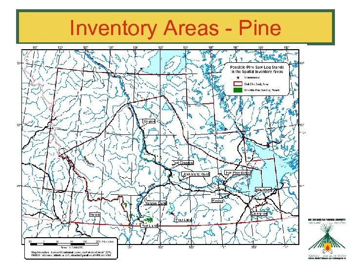 Inventory Areas - Pine