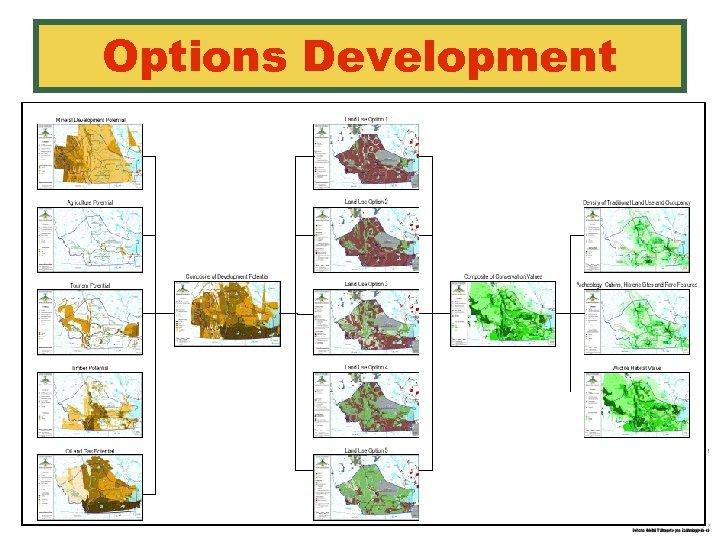 Options Development