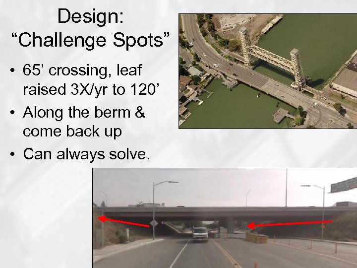 "Design: ""Challenge Spots"" • 65' crossing, leaf raised 3 X/yr to 120' • Along"