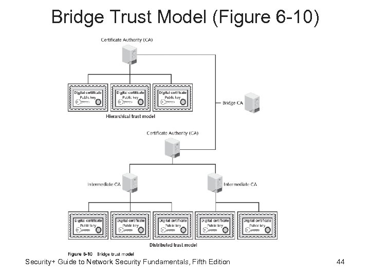Bridge Trust Model (Figure 6 -10) Security+ Guide to Network Security Fundamentals, Fifth Edition