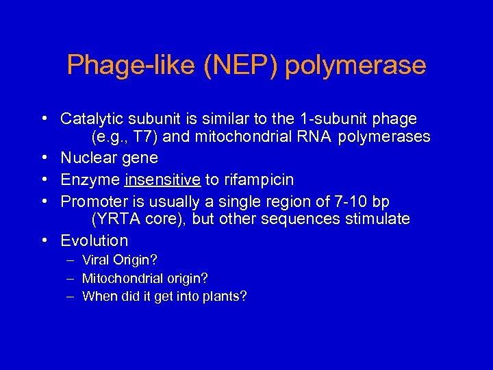 Phage-like (NEP) polymerase • Catalytic subunit is similar to the 1 -subunit phage (e.