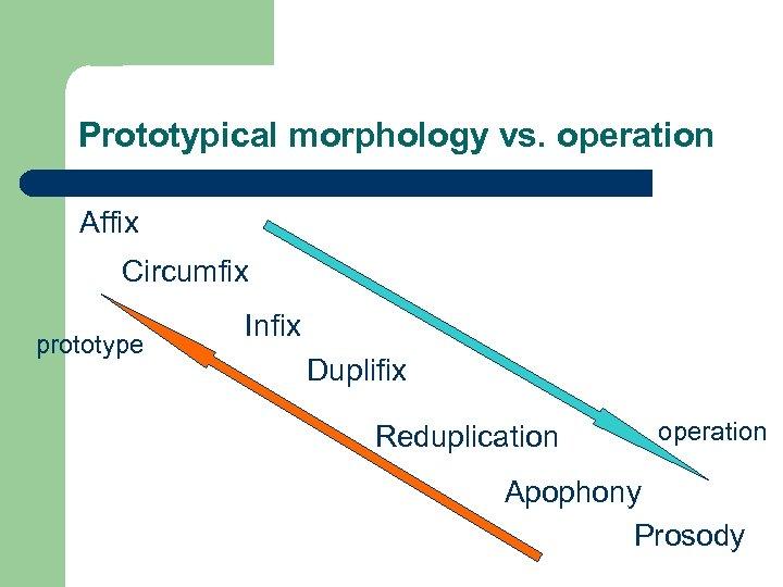 Prototypical morphology vs. operation Affix Circumfix prototype Infix Duplifix Reduplication operation Apophony Prosody