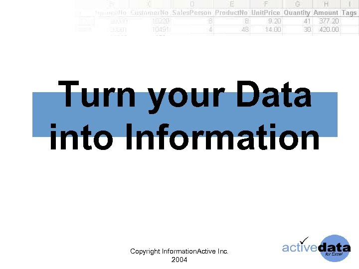Turn your Data into Information Copyright Information. Active Inc. 2004