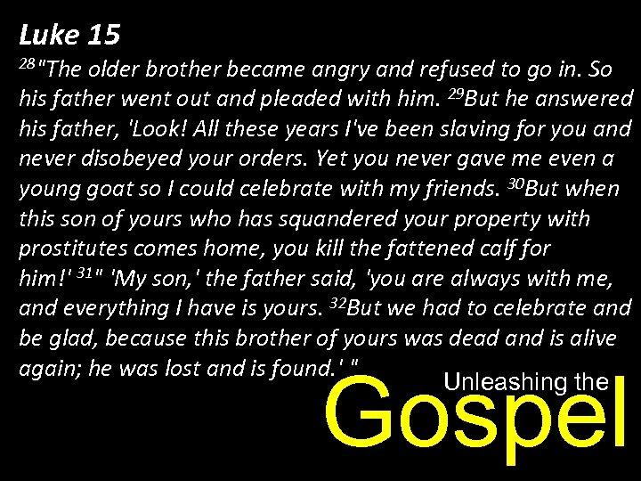 Luke 15 28