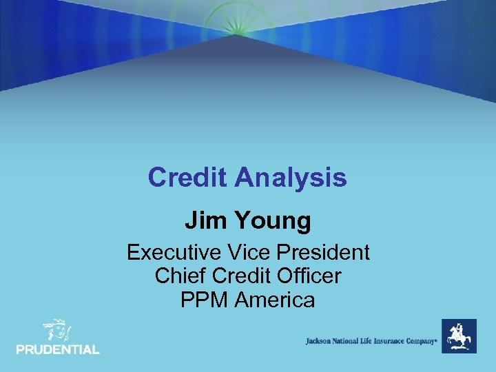Credit Analysis Jim Young Executive Vice President Chief Credit Officer PPM America