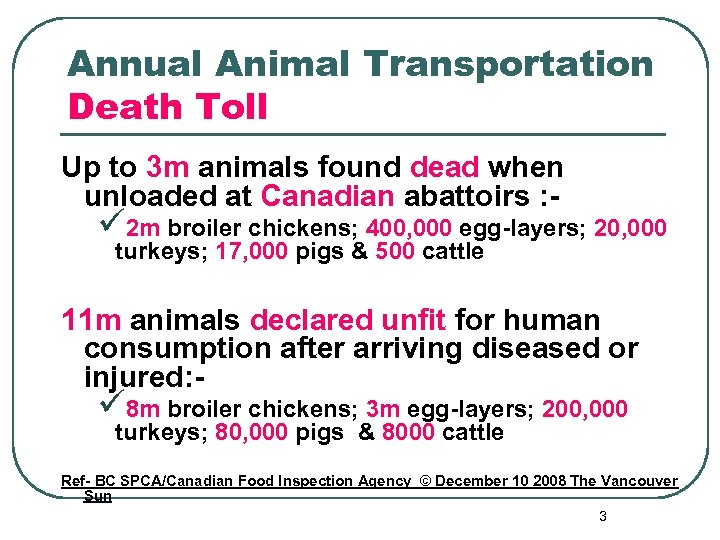 Annual Animal Transportation Death Toll Up to 3 m animals found dead when unloaded