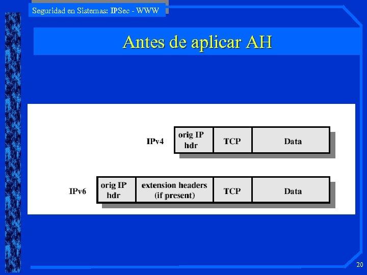Seguridad en Sistemas: IPSec - WWW Antes de aplicar AH 20