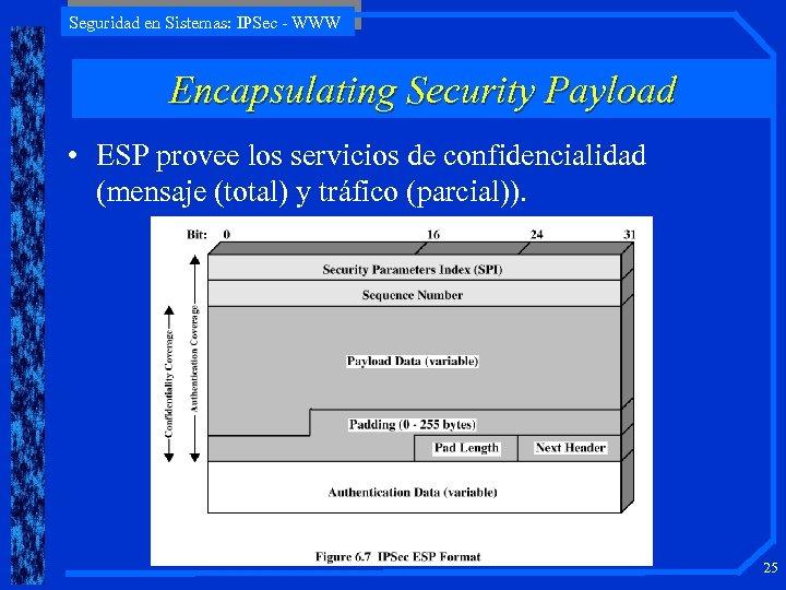Seguridad en Sistemas: IPSec - WWW Encapsulating Security Payload • ESP provee los servicios