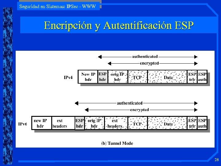 Seguridad en Sistemas: IPSec - WWW Encripción y Autentificación ESP 28