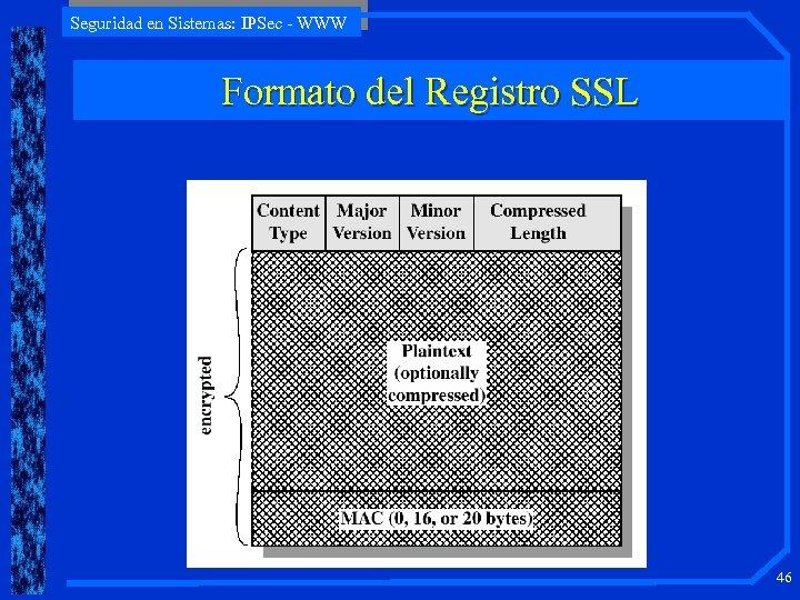 Seguridad en Sistemas: IPSec - WWW Formato del Registro SSL 46
