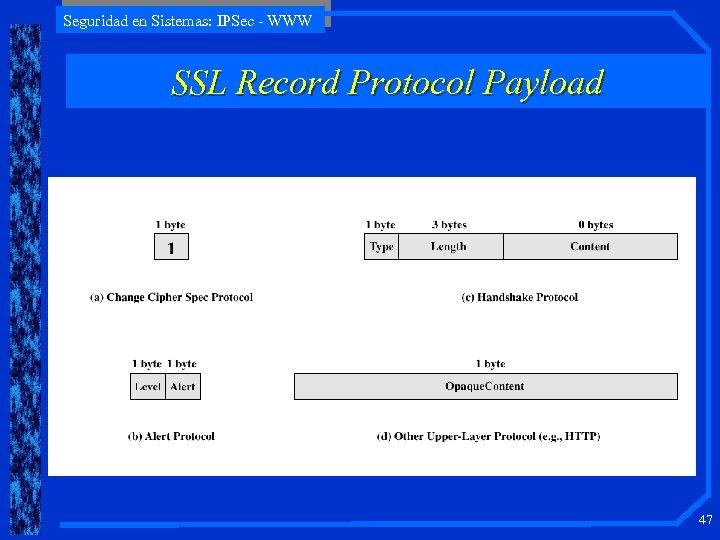 Seguridad en Sistemas: IPSec - WWW SSL Record Protocol Payload 47