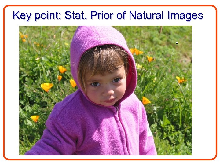 Key point: Stat. Prior of Natural Images