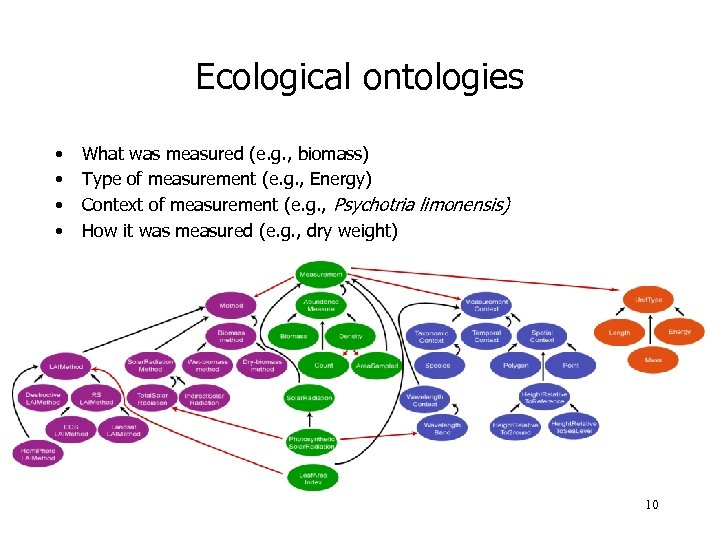 Ecological ontologies • • What was measured (e. g. , biomass) Type of measurement