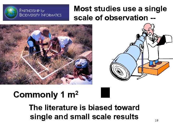 Most studies use a single scale of observation -- Commonly 1 m 2 The