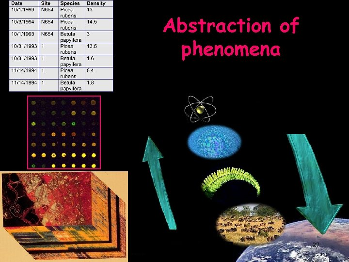Abstraction of phenomena 27