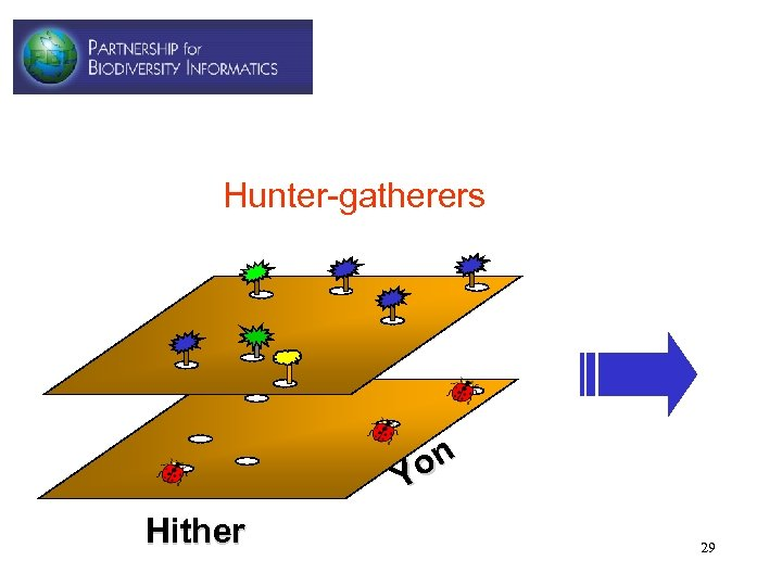 Hunter-gatherers on Y Hither 29