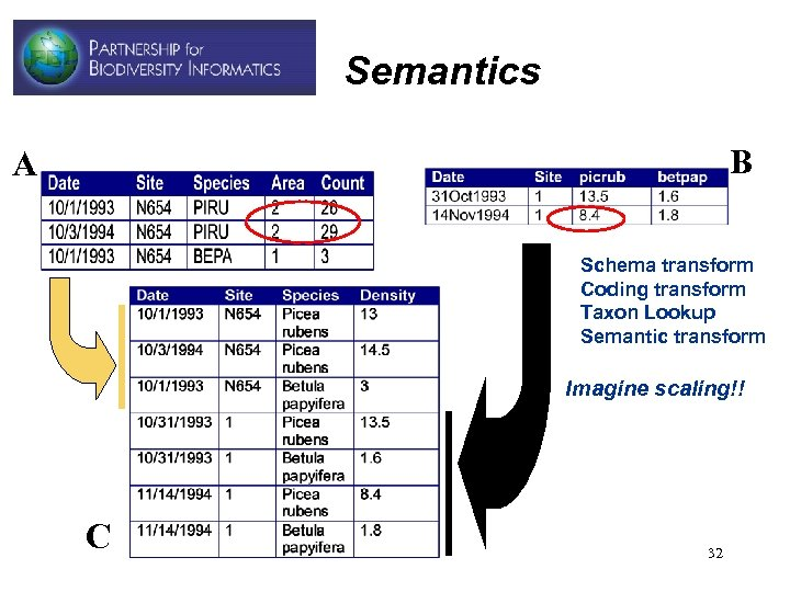 Semantics B A • • Schema transform Coding transform Taxon Lookup Semantic transform Imagine