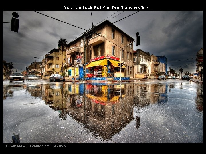 You Can Look But You Don't always See Pinabela – Hayarkon St', Tel-Aviv