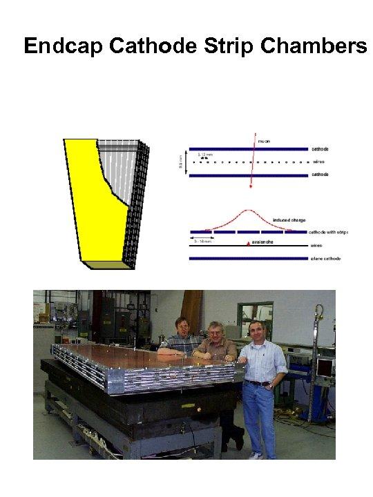 Endcap Cathode Strip Chambers