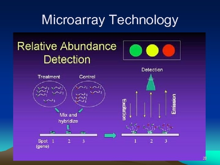 Microarray Technology 20