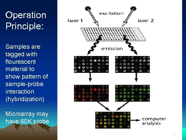 Operation Principle: Samples are tagged with flourescent material to show pattern of sample-probe interaction