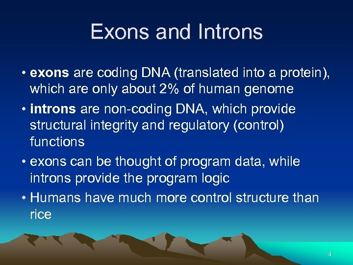 Exons and Introns • exons are coding DNA (translated into a protein), which are