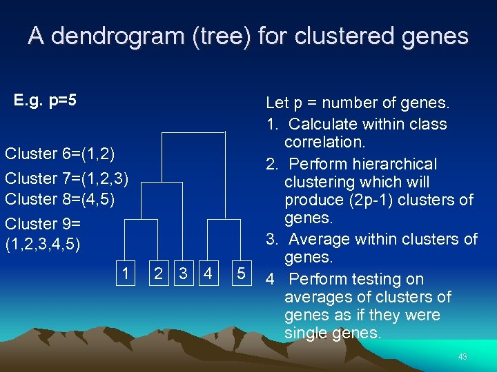 A dendrogram (tree) for clustered genes E. g. p=5 Cluster 6=(1, 2) Cluster 7=(1,