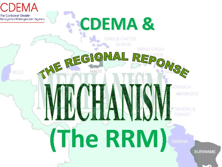CDEMA & (The RRM)