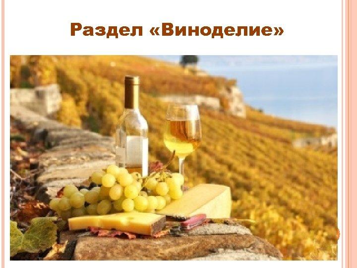 Раздел «Виноделие»