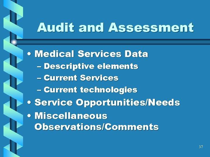 Audit and Assessment • Medical Services Data – Descriptive elements – Current Services –