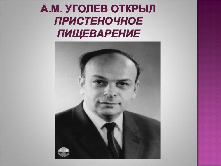 А. М. УГОЛЕВ ОТКРЫЛ ПРИСТЕНОЧНОЕ ПИЩЕВАРЕНИЕ